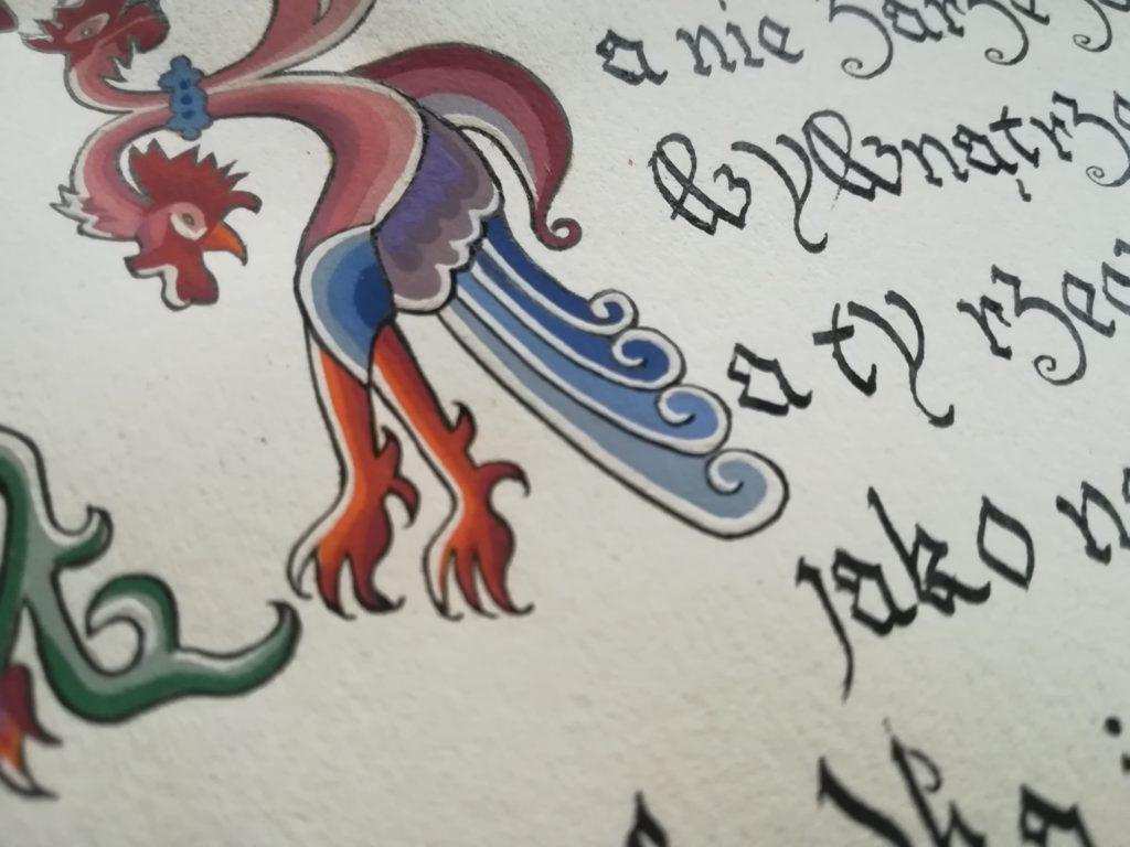 miniatura kogut, najstarszy przepis na rosół, przepis na rosół z XVI w.