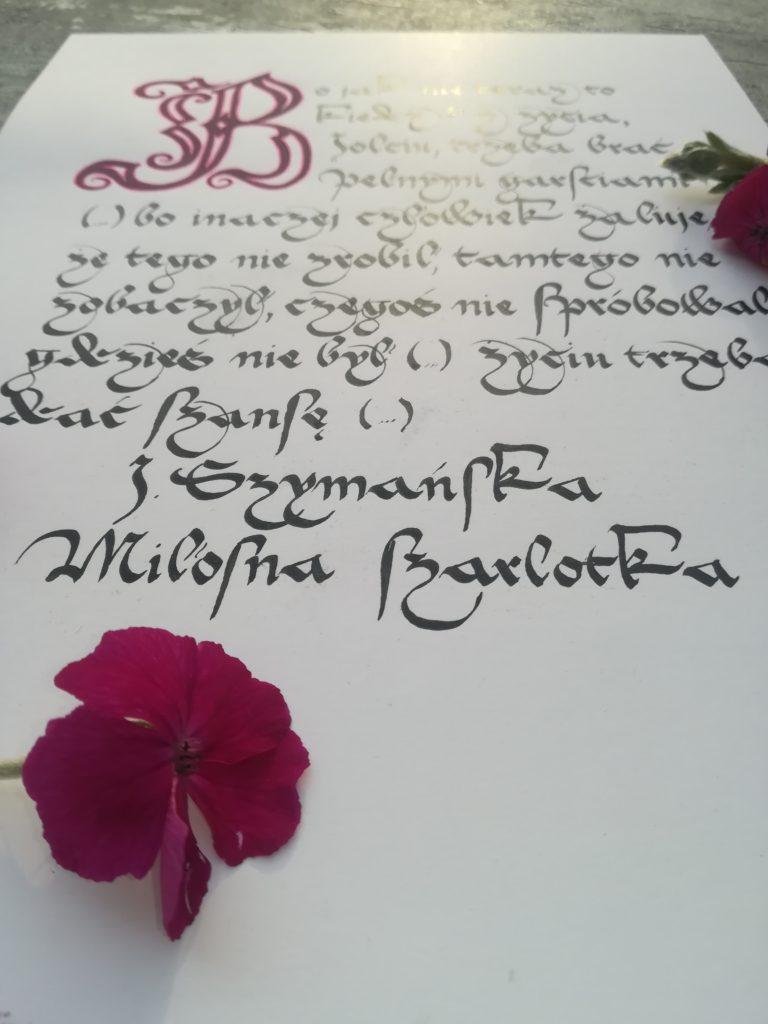 miłosna szarlotka, kaligrafia szarlotka, kaligrafia średniowieczna, kaligrafia małopolska