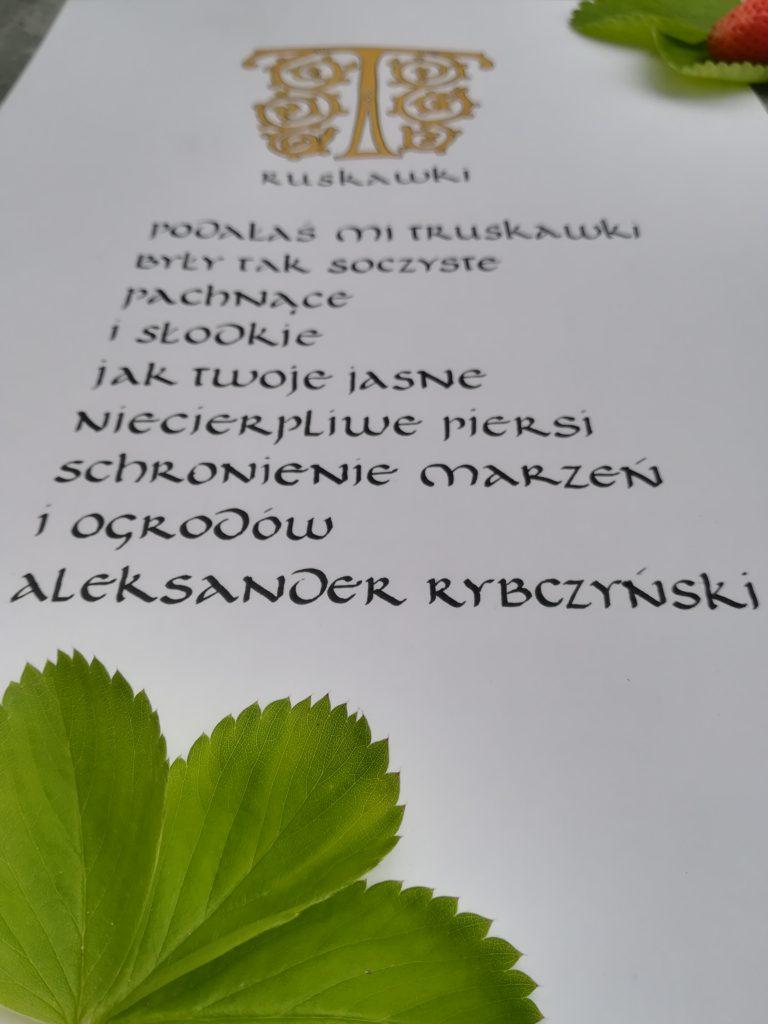 kaligrafia truskawki, kaligrafia literacka, kaligrafia wiersz Aleksandra Rybczyńskiego
