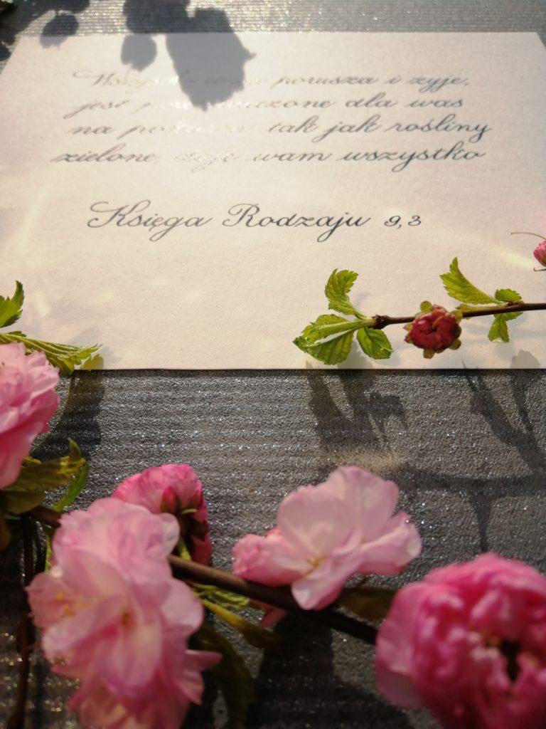 kaligrafia, kaligrafia małopolska, kaligrafia wielicka, kursywa angielska, teksty z Pisma Świętego