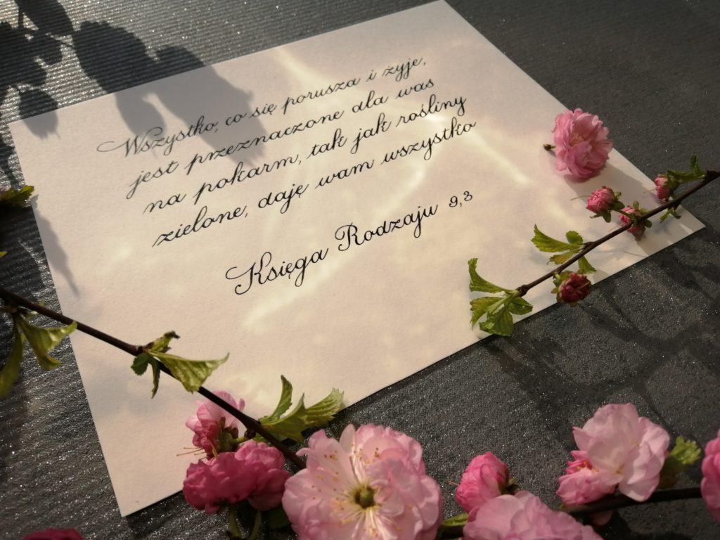 kwitnący migdałek, kwiaty wiosenne, cytaty z Biblii kaligrafia, kaligrafia wieliczka, wiosenne inspiracje, piękne teksty z Biblii
