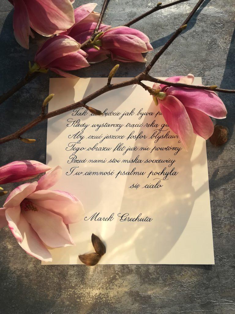 Marek Grechuta teksty, food&calligraphy, polish calligraphy, magnolie, kaligrafia magnolie, wiersze, wiosenne impresje, nastrojowe teksty