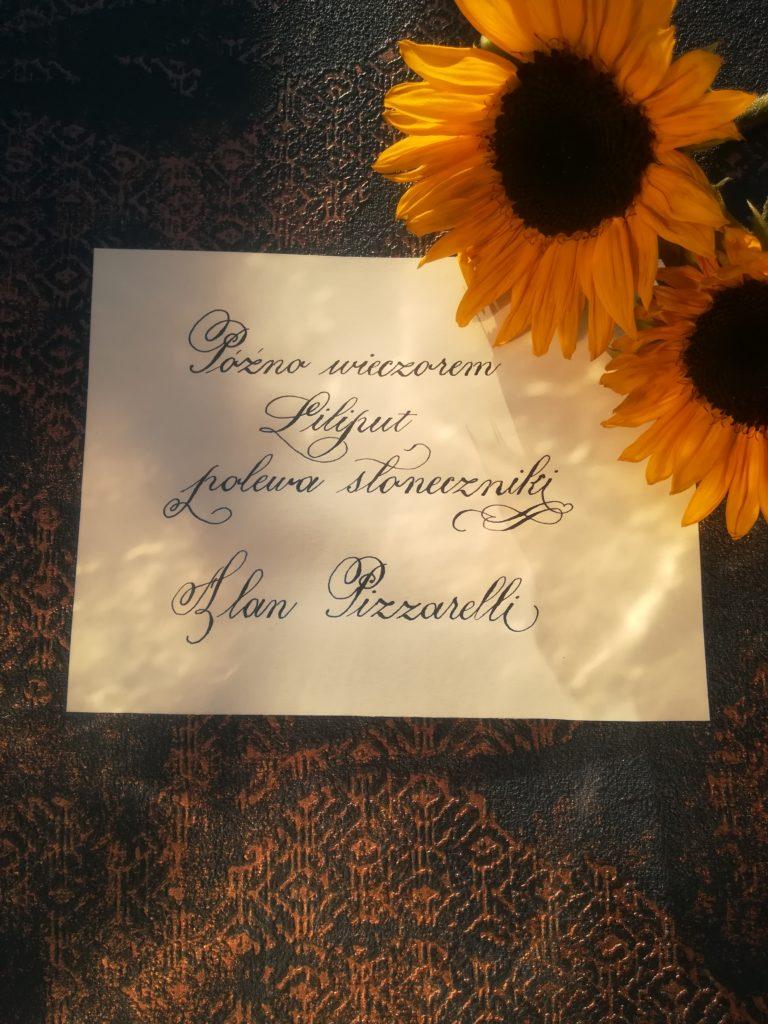 najlepsze haiku, haiku po polsku, haiku kaligrafia, sunflowers
