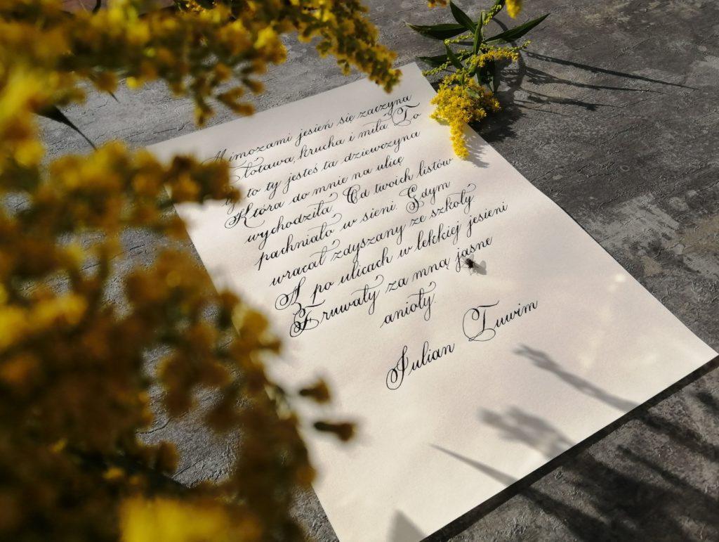mimozami jesień się zaczyna, kursywa angielska wiersze, wiersze pisane kursywą angielską, mimozy