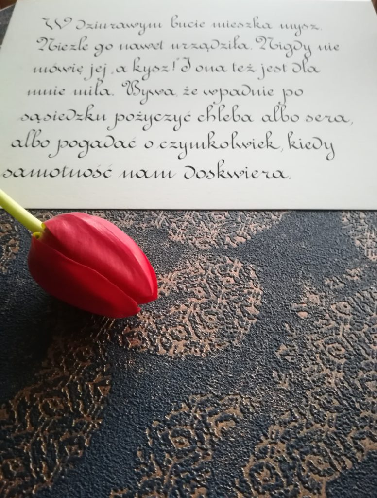 polish poems, polish calligraphy, kaligrafia małopolska, food and calligraphy, food&calligraphy, food blogger, kaligrafia Wieliczka