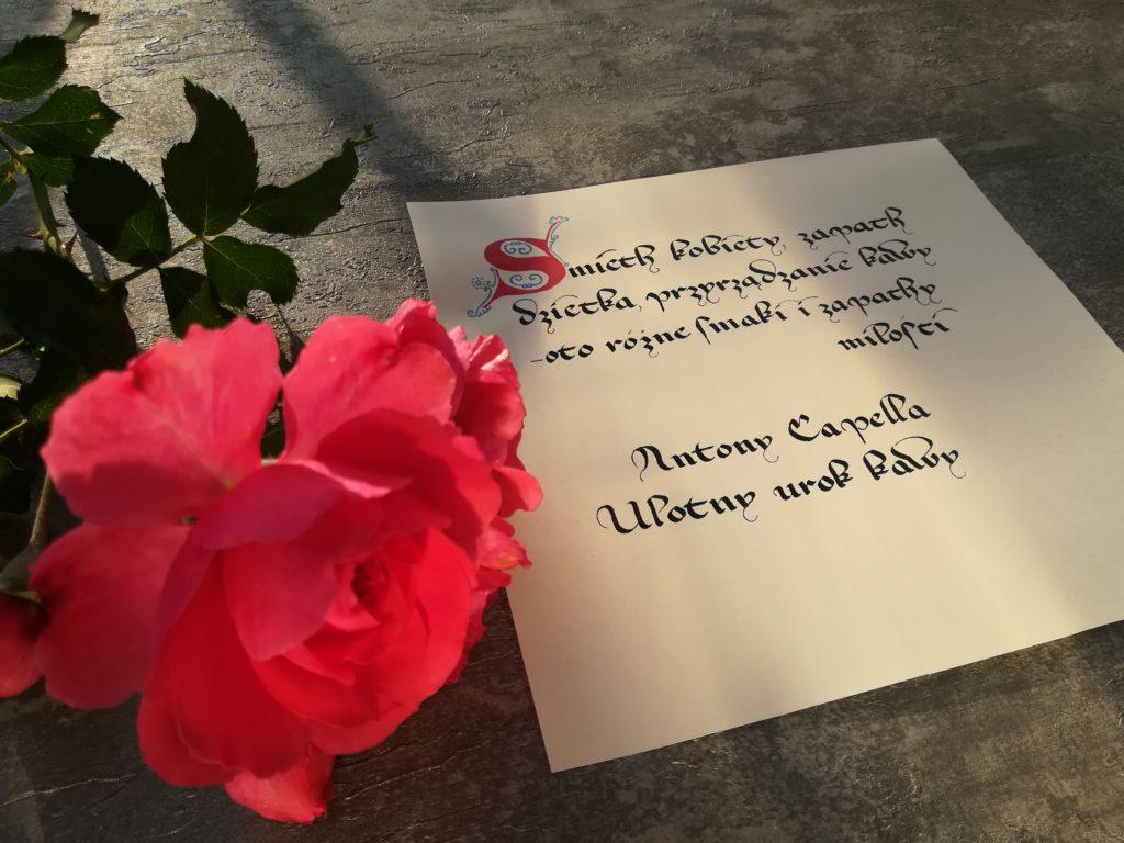 kaligrafia kulinarna, ulotny urok kawy, polish calligraphy